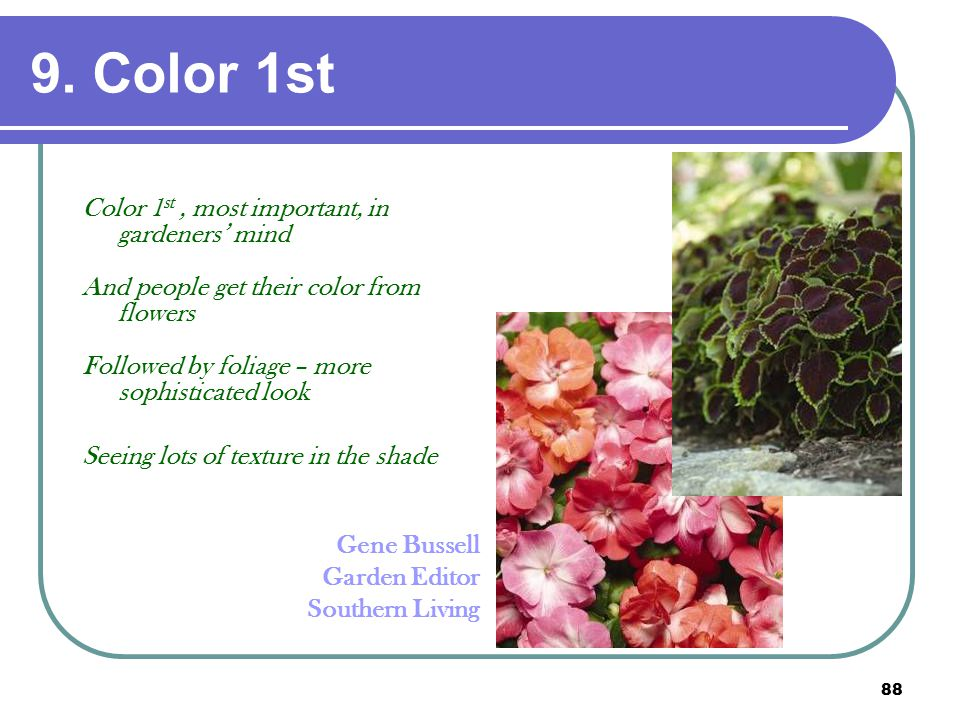 88 9. Color 1st Color 1 st, most important, in gardeners' mind And people get their color from flowers Followed by foliage – more sophisticated look S