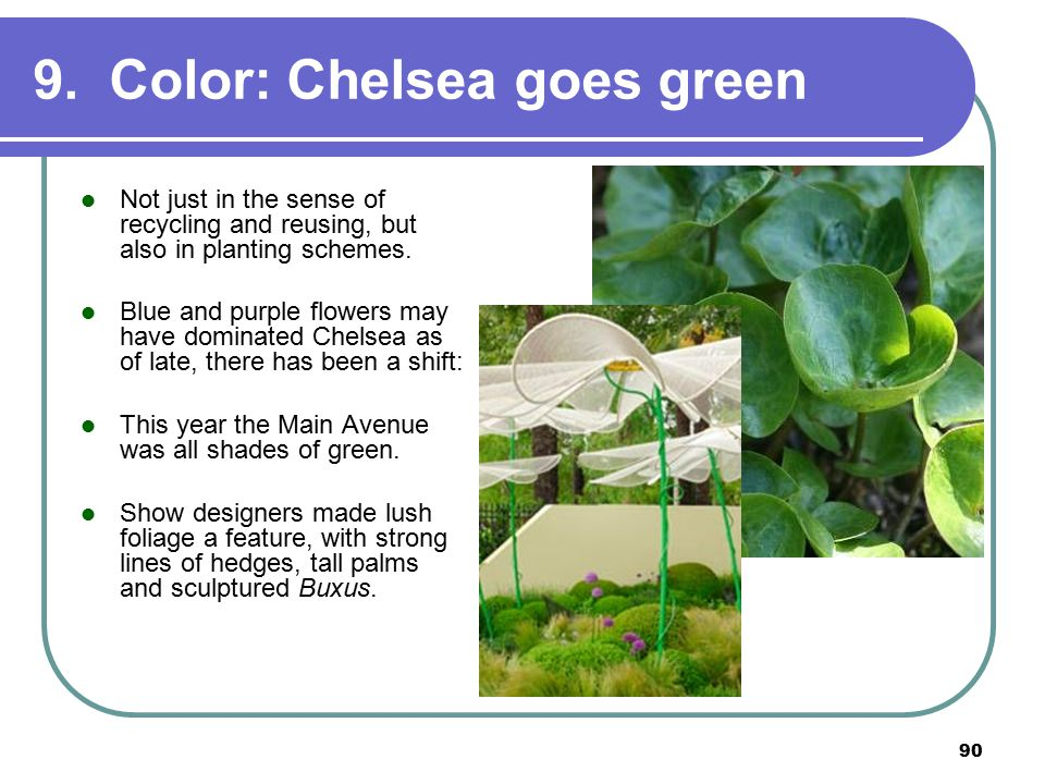 90 9. Color: Chelsea goes green Not just in the sense of recycling and reusing, but also in planting schemes. Blue and purple flowers may have dominat