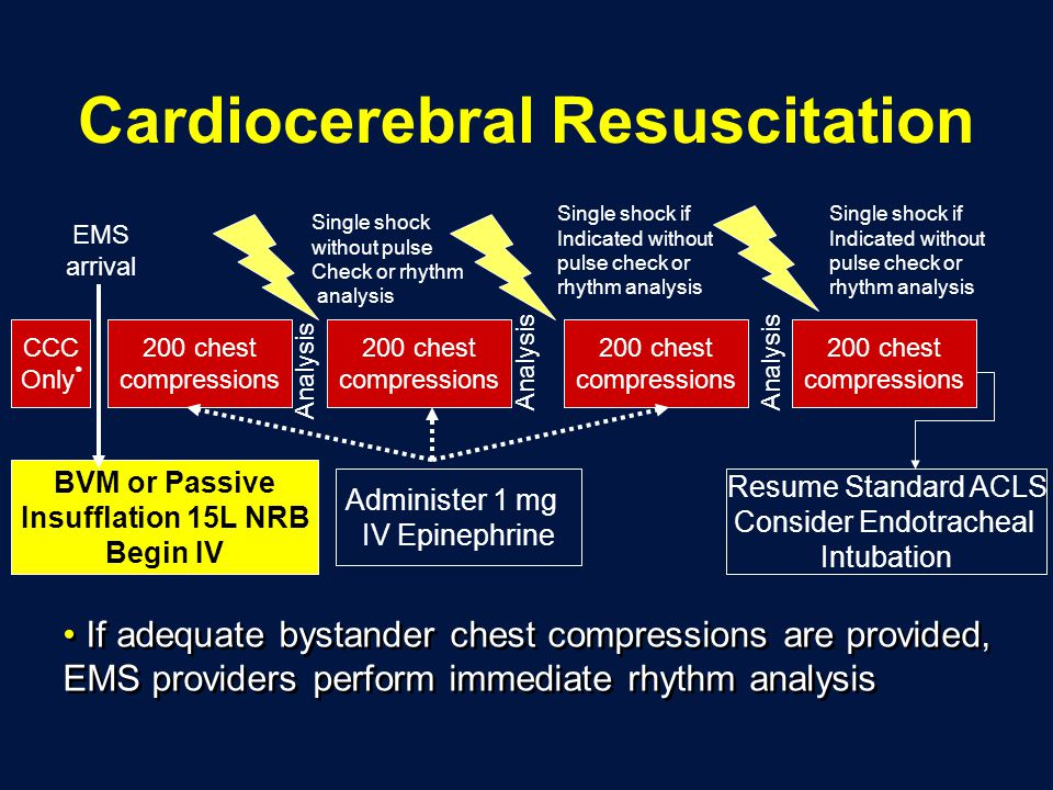 Cardiocerebral Resuscitation 200 chest compressions 200 chest compressions Single shock without pulse Check or rhythm analysis BVM or Passive Insufflation 15L NRB Begin IV Analysis 200 chest compressions Single shock if Indicated without pulse check or rhythm analysis Analysis Single shock if Indicated without pulse check or rhythm analysis Resume Standard ACLS Consider Endotracheal Intubation 200 chest compressions CCC Only EMS arrival Administer 1 mg IV Epinephrine Analysis If adequate bystander chest compressions are provided, EMS providers perform immediate rhythm analysis