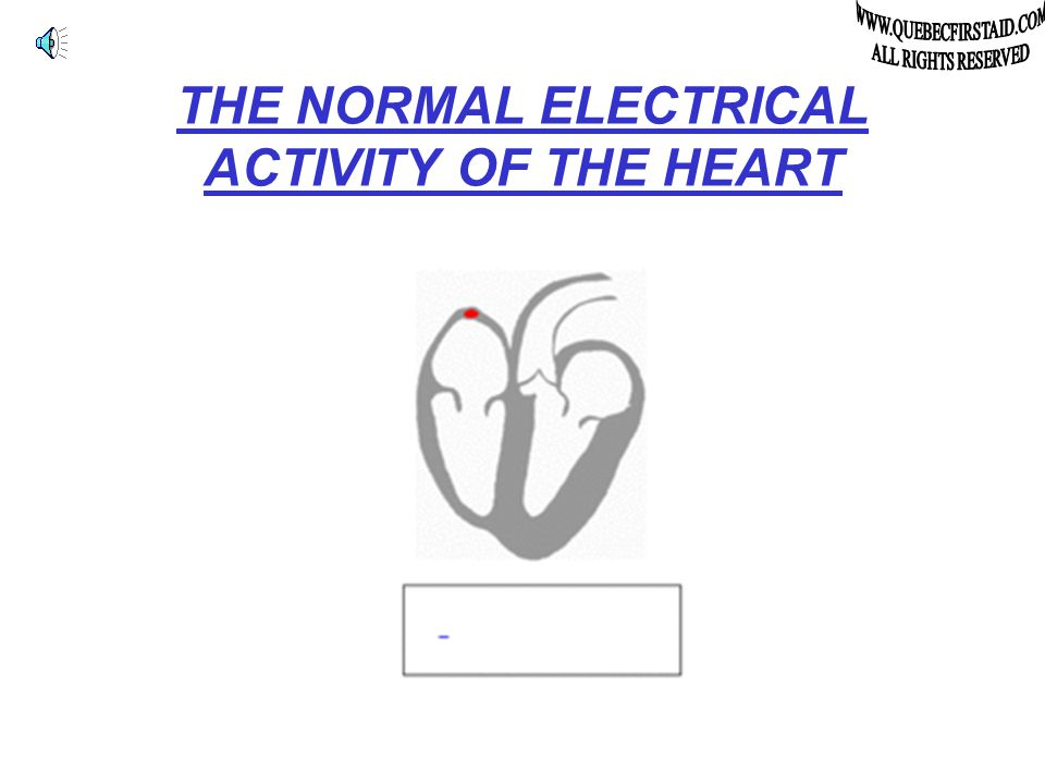 The A E D Automatic External Defibrillator And even if a miracle occurs and the victim's heart restart after more than 12 minutes without breathing, the victim would be in a vegetable condition at the best.