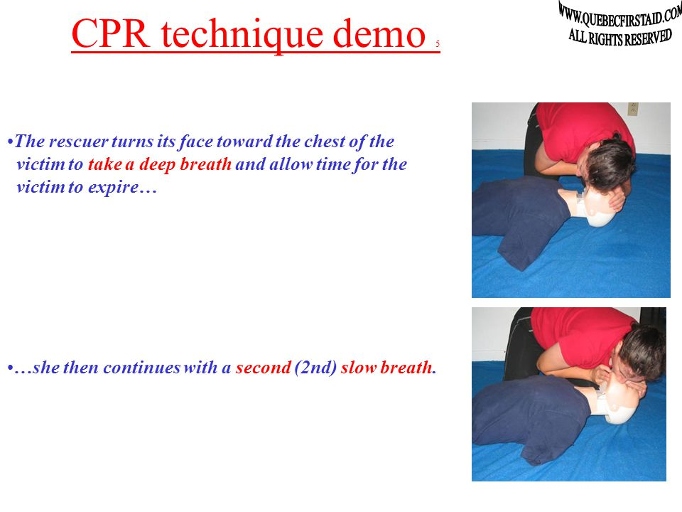 CPR technique demo 4 The rescuer takes five to ten (5 to 10) seconds to assess the breathing of the victim.