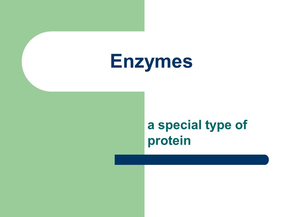 Enzymes a special type of protein
