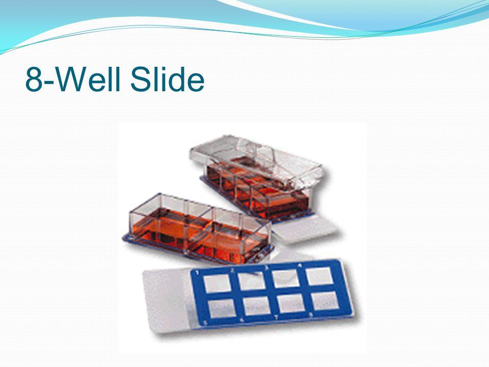 8-Well Slide