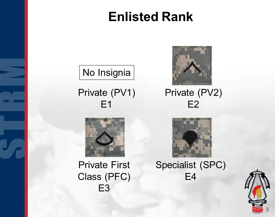 3 Enlisted Rank Private First Class (PFC) E3 Specialist (SPC) E4 Private (PV2) E2 Private (PV1) E1 No Insignia