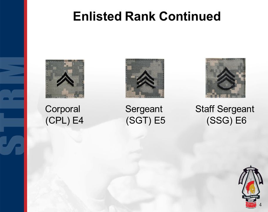 5 Enlisted Rank Continued Sergeant First Class (SFC) E7 Master Sergeant (MSG) E8 First Sergeant (1SG) E8