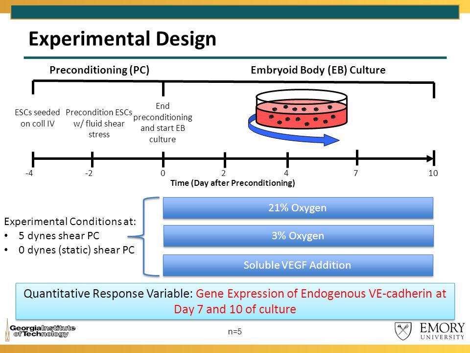 Experimental Design n=5 Preconditioning (PC)Embryoid Body (EB) Culture ESCs seeded on coll IV -4 Precondition ESCs w/ fluid shear stress -2 End precon