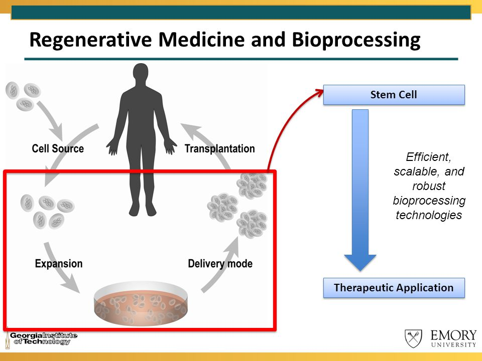 Regenerative Medicine and Bioprocessing Stem Cell Therapeutic Application Efficient, scalable, and robust bioprocessing technologies