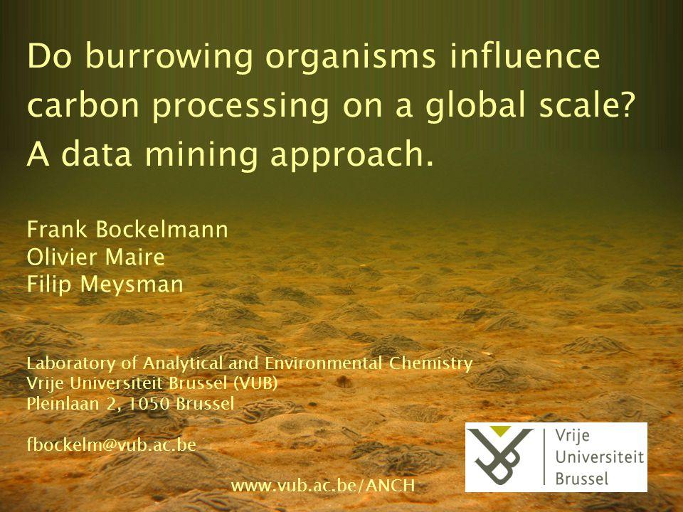 Do burrowing organisms influence carbon processing on a global scale? A data mining approach. Frank Bockelmann Olivier Maire Filip Meysman Laboratory