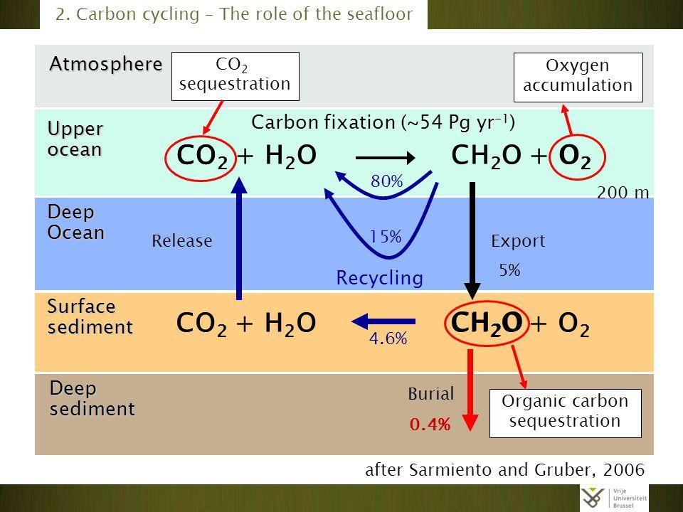 Atmosphere Deep Ocean Deepsediment Surface sediment Upper ocean 0.4% 5% 4.6% CO 2 + H 2 O CH 2 O + O 2 Recycling 15% 80% Carbon fixation (~54 Pg yr -1