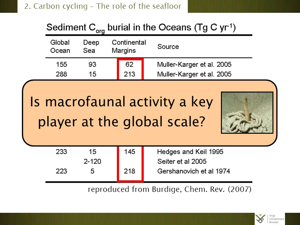reproduced from Burdige, Chem. Rev. (2007) 2. Carbon cycling – The role of the seafloor Is macrofaunal activity a key player at the global scale?