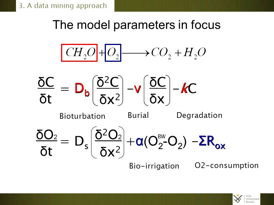 The model parameters in focus Bioturbation Burial Degradation Bio-irrigation O2-consumption 3. A data mining approach