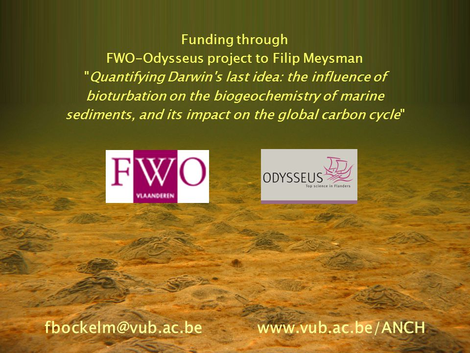 Funding through FWO-Odysseus project to Filip Meysman Quantifying Darwin s last idea: the influence of bioturbation on the biogeochemistry of marine sediments, and its impact on the global carbon cycle fbockelm@vub.ac.be www.vub.ac.be/ANCH