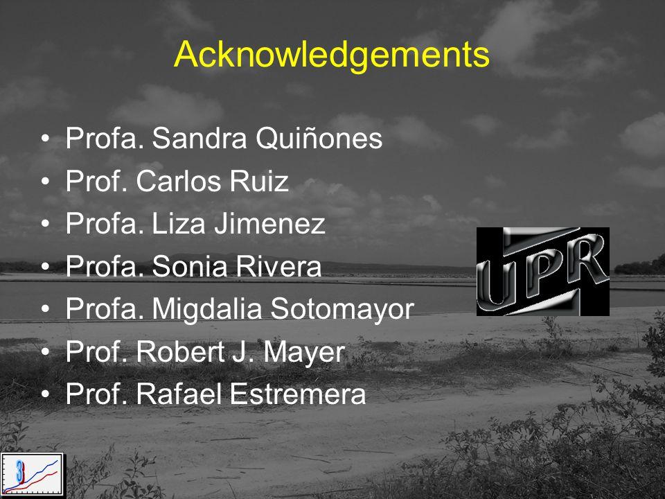 Acknowledgements Profa. Sandra Quiñones Prof. Carlos Ruiz Profa.
