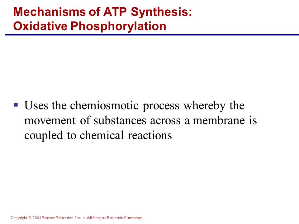 Copyright © 2004 Pearson Education, Inc., publishing as Benjamin Cummings  Uses the chemiosmotic process whereby the movement of substances across a membrane is coupled to chemical reactions Mechanisms of ATP Synthesis: Oxidative Phosphorylation