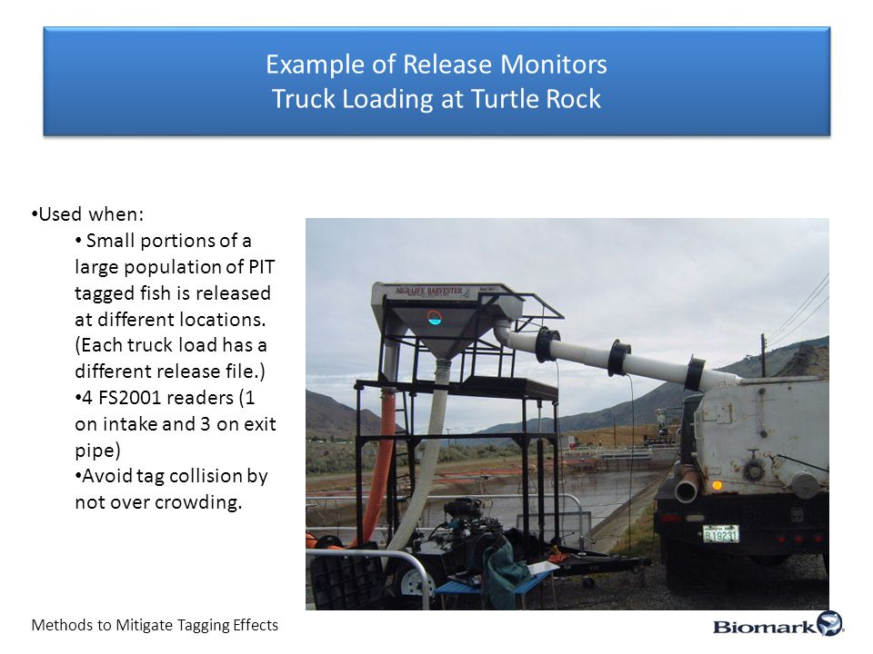 Example of Release Monitors Truck Loading at Turtle Rock Methods to Mitigate Tagging Effects Used when: Small portions of a large population of PIT tagged fish is released at different locations.