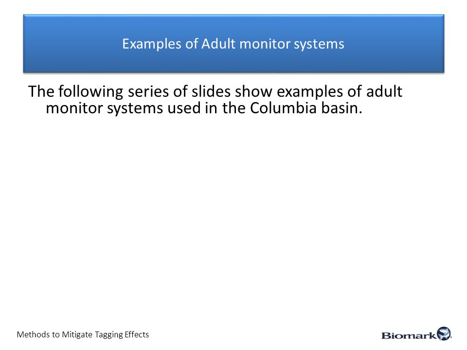 Examples of Adult monitor systems Methods to Mitigate Tagging Effects The following series of slides show examples of adult monitor systems used in the Columbia basin.