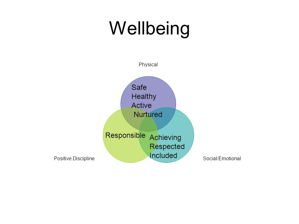 Wellbeing Physical Social/Emotional Positive Discipline Safe Healthy Active Nurtured Achieving Respected Included Responsible