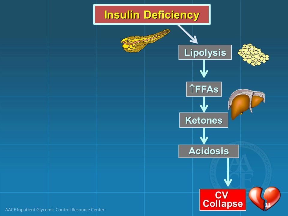 Lipolysis  FFAs Acidosis Ketones CVCollapse Insulin Deficiency 11