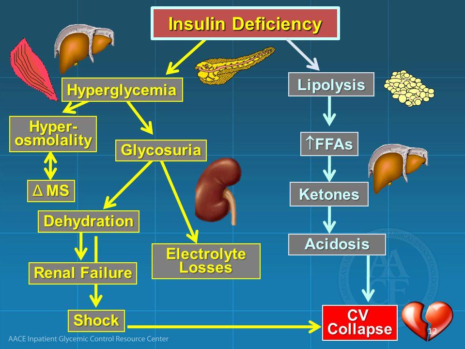 ElectrolyteLosses Renal Failure Shock CVCollapse Insulin Deficiency Hyperglycemia Hyper-osmolality Δ MS Lipolysis  FFAs Acidosis Ketones CVCollapse Glycosuria Dehydration 12