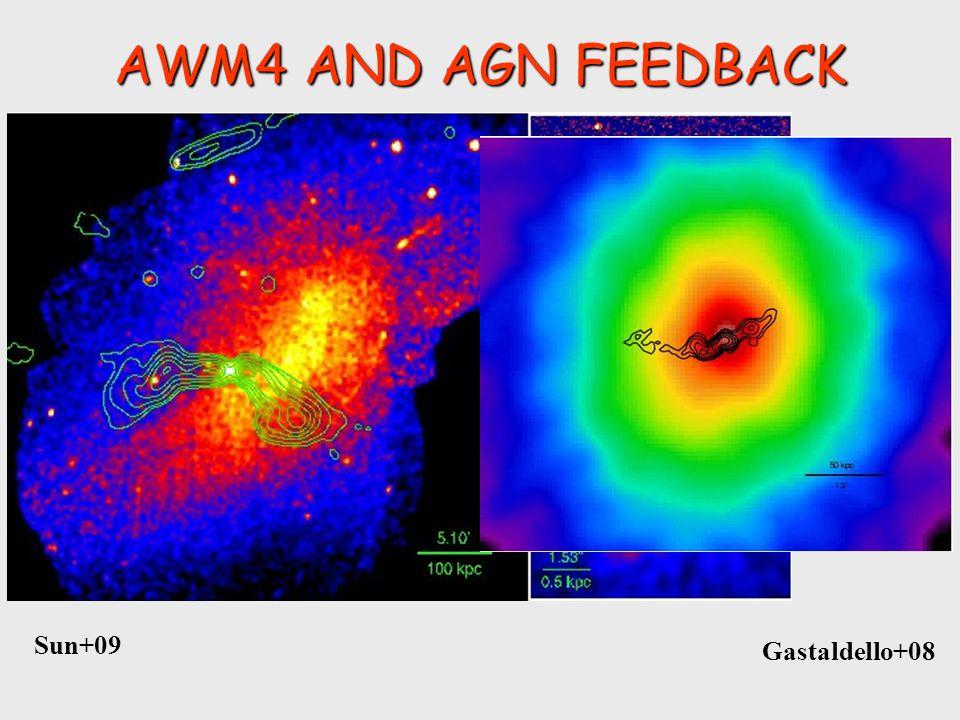 AWM4 AND AGN FEEDBACK Cavagnolo+08