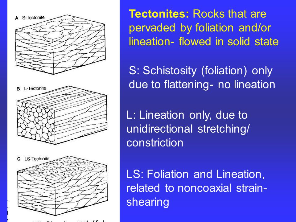 Tectonites: Rocks that are pervaded by foliation and/or lineation- flowed in solid state S: Schistosity (foliation) only due to flattening- no lineation L: Lineation only, due to unidirectional stretching/ constriction LS: Foliation and Lineation, related to noncoaxial strain- shearing