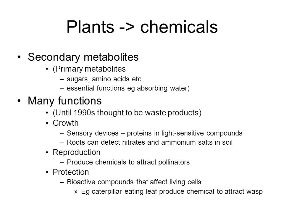 Plants -> chemicals Secondary metabolites (Primary metabolites –sugars, amino acids etc –essential functions eg absorbing water) Many functions (Until