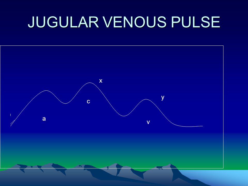 JUGULAR VENOUS PULSE a v c y x