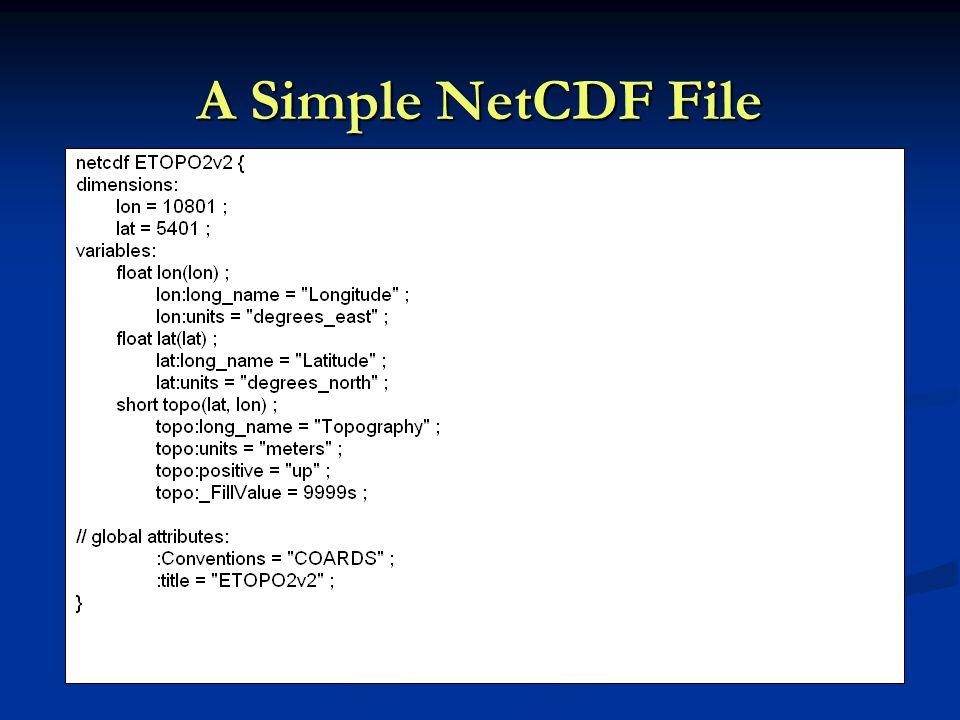 A Simple NetCDF File