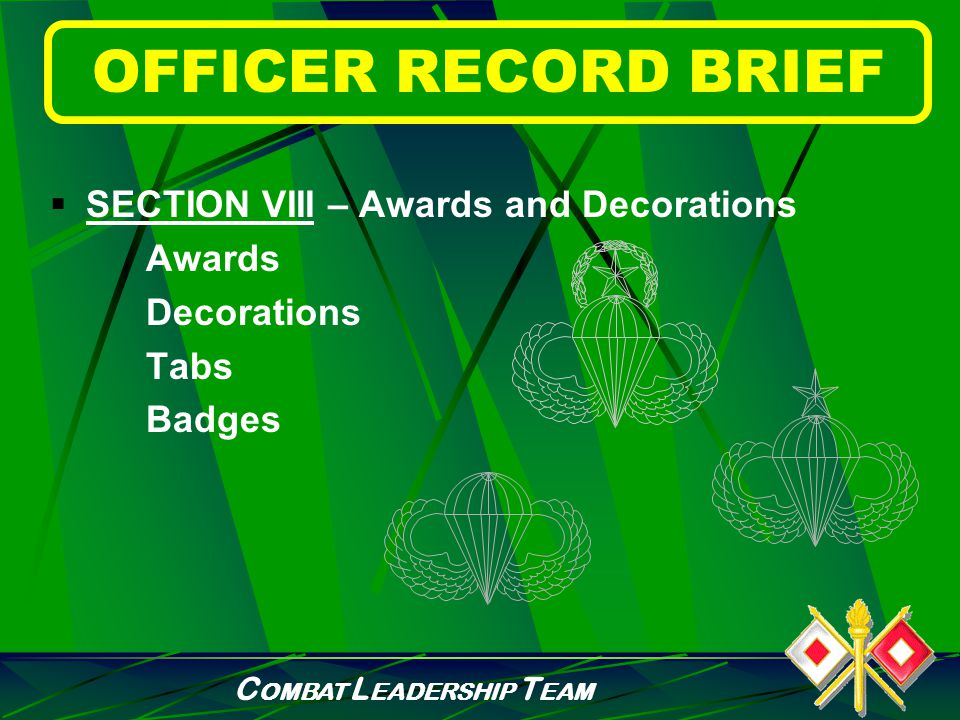 C OMBAT L EADERSHIP T EAM OFFICER RECORD BRIEF  SECTION VII – Civilian Education Civil Education Level Institution Discipline Source of Degree