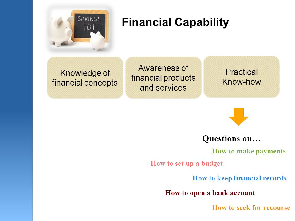 Financial Capability Knowledge of financial concepts Awareness of financial products and services Practical Know-how Questions on… How to set up a bud