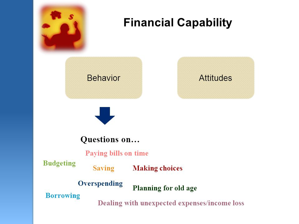 Financial Capability Questions on… Budgeting Paying bills on time Overspending Saving Borrowing Making choices Dealing with unexpected expenses/income loss Planning for old age BehaviorAttitudes