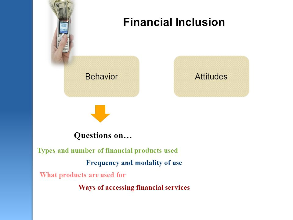 Financial Inclusion Questions on… Types and number of financial products used Ways of accessing financial services Frequency and modality of use What products are used for BehaviorAttitudes