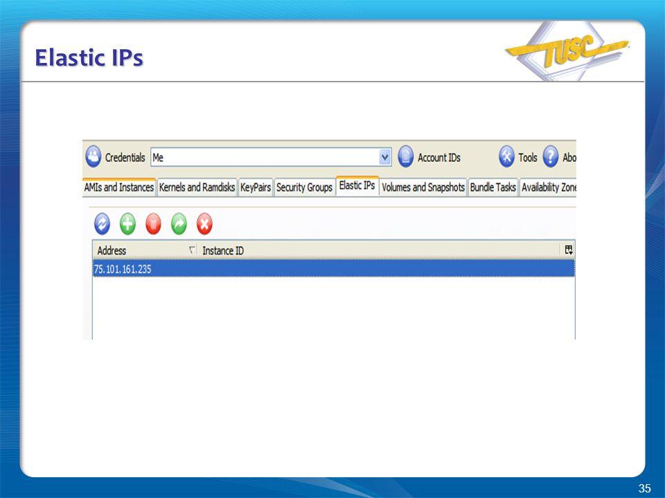 35 Elastic IPs