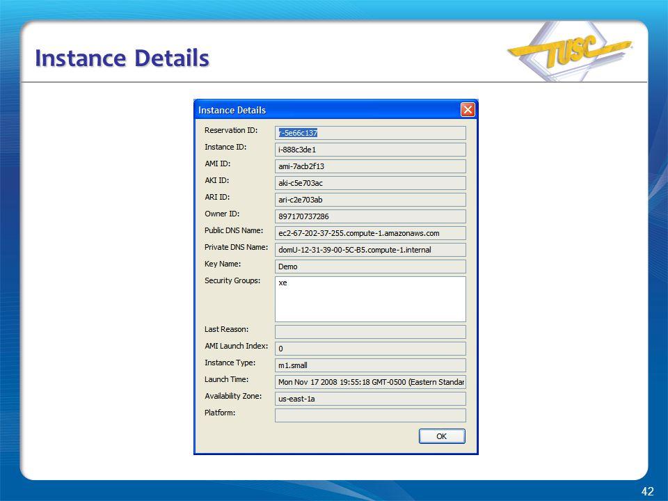 42 Instance Details