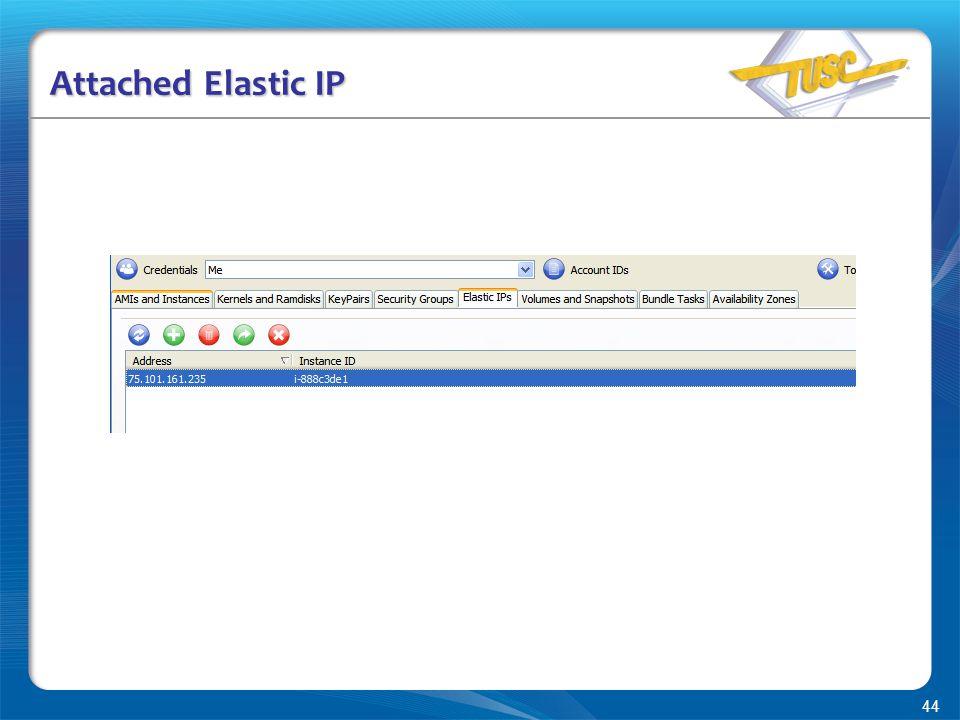 44 Attached Elastic IP