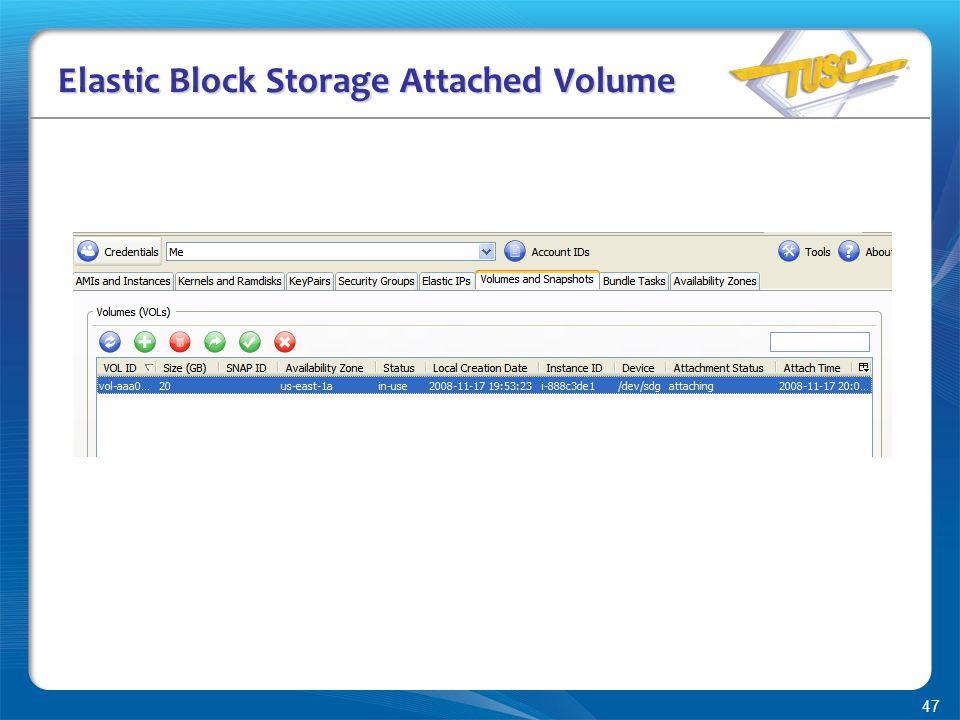 47 Elastic Block Storage Attached Volume
