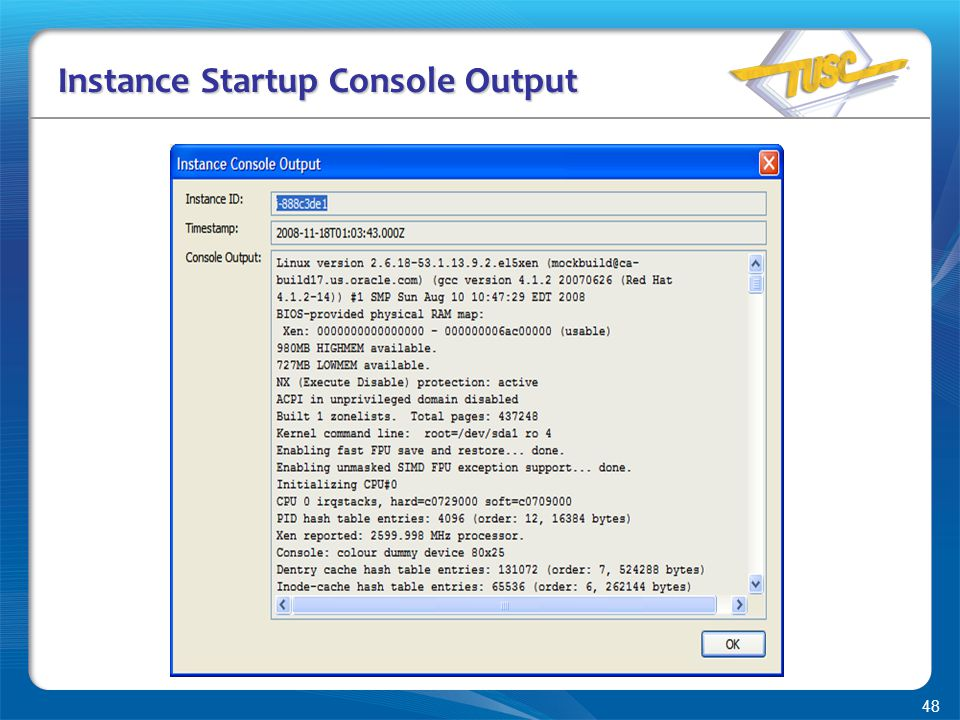48 Instance Startup Console Output