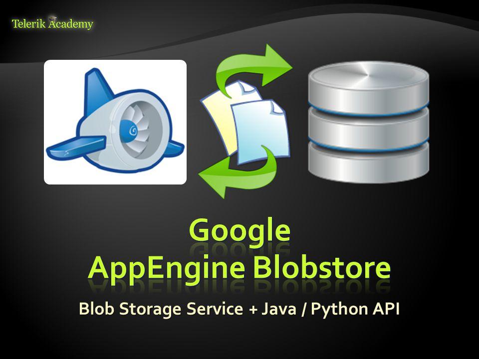 Blob Storage Service + Java / Python API