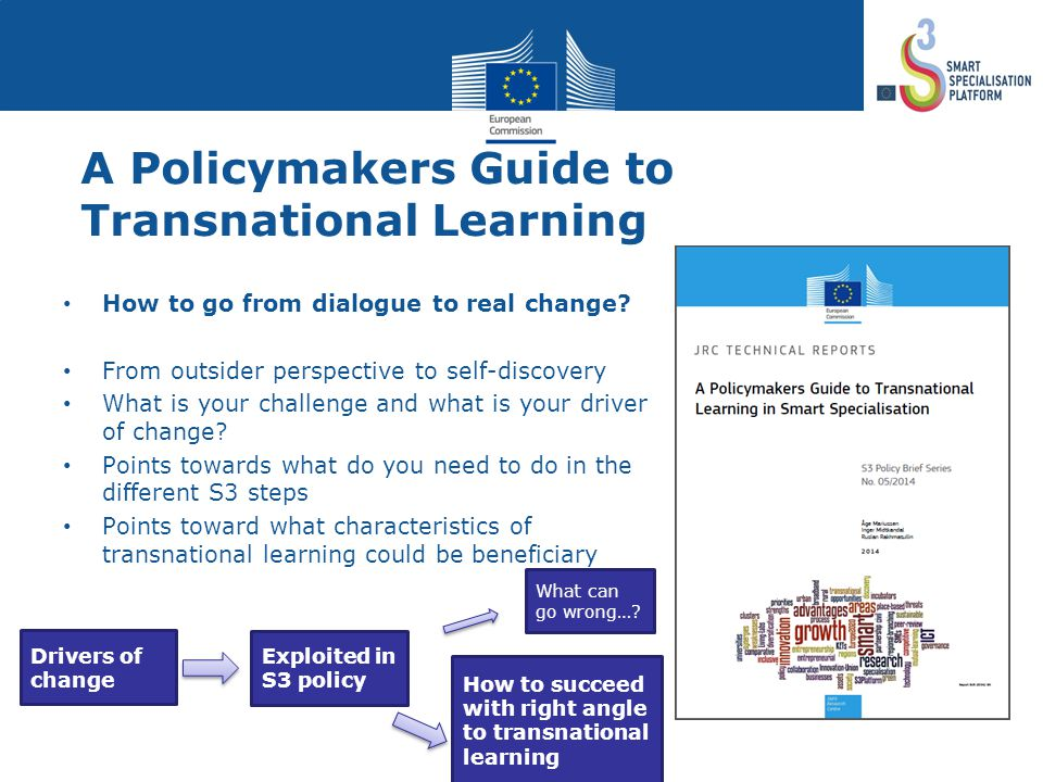 A Policymakers Guide to Transnational Learning How to go from dialogue to real change.