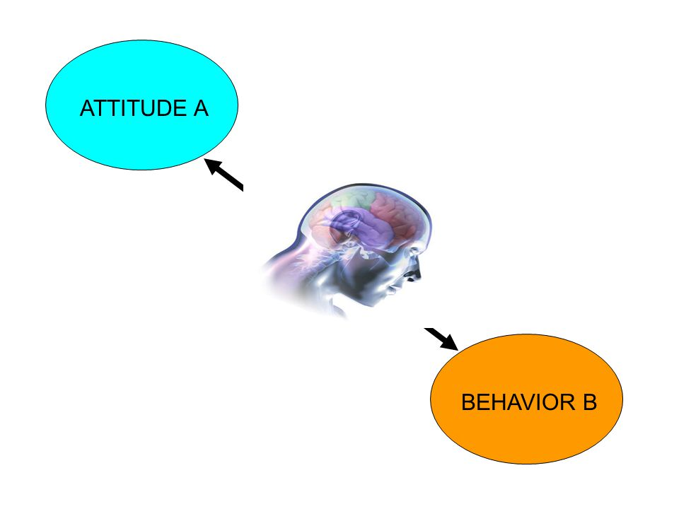 ATTITUDE A BEHAVIOR B X