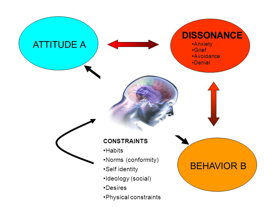 ATTITUDE A DISSONANCE Anxiety Grief Avoidance Denial BEHAVIOR B X CONSTRAINTS Habits Norms (conformity) Self identity Ideology (social) Desires Physical constraints