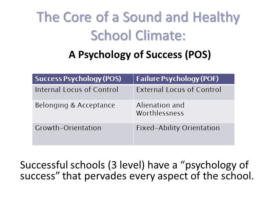 A Psychology of Success (POS) Successful schools (3 level) have a psychology of success that pervades every aspect of the school.