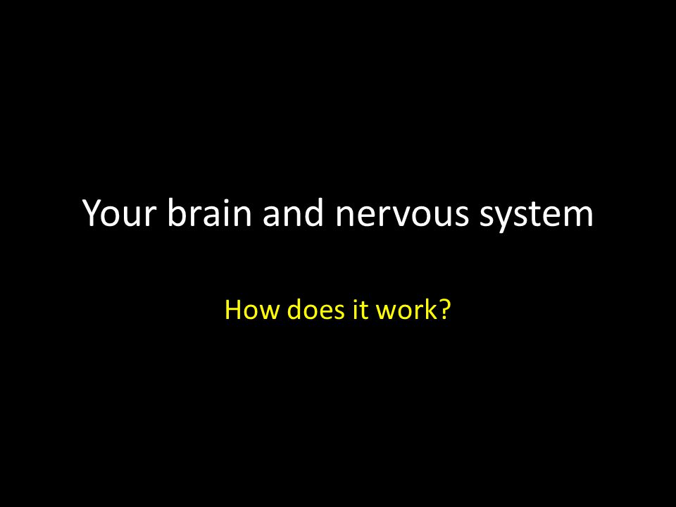 Your brain and nervous system How does it work?