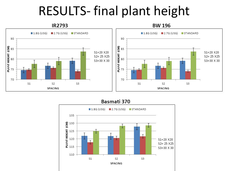 RESULTS- final plant height IR2793BW 196 Basmati 370
