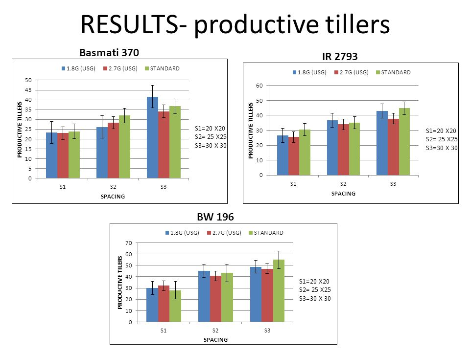 RESULTS- productive tillers Basmati 370 IR 2793 BW 196