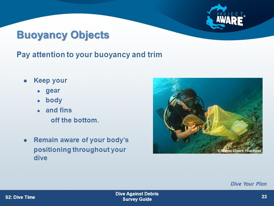 Buoyancy Objects Keep your gear body and fins off the bottom.