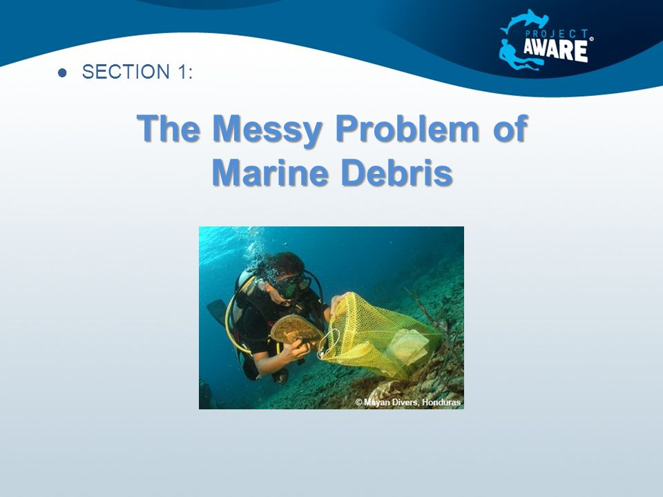 The Messy Problem of Marine Debris SECTION 1:
