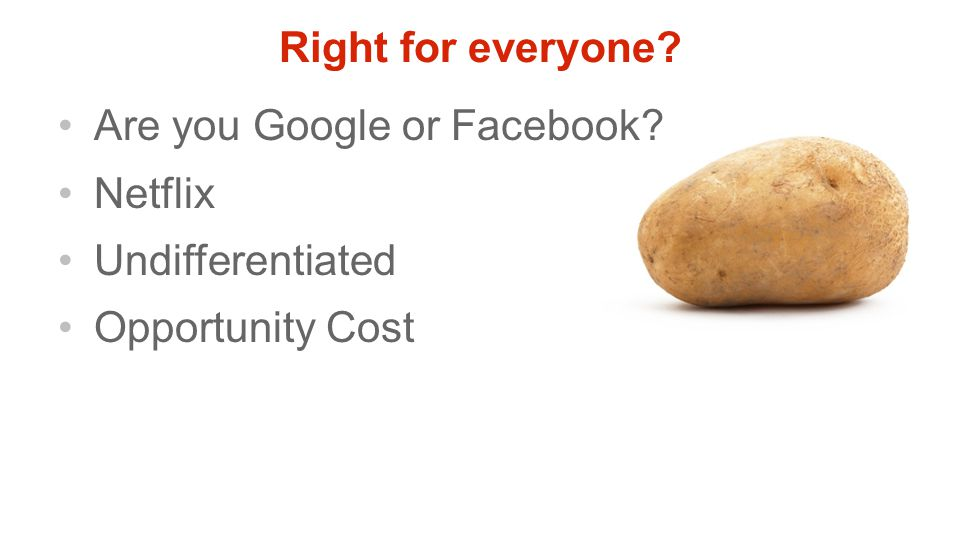 Right for everyone? Are you Google or Facebook? Netflix Undifferentiated Opportunity Cost