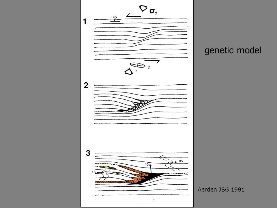genetic model Aerden JSG 1991