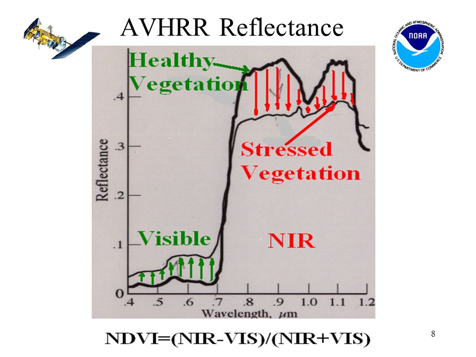 8 AVHRR Reflectance